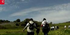 Embedded thumbnail for Cuide da floresta | Semana do Ambiente 2014